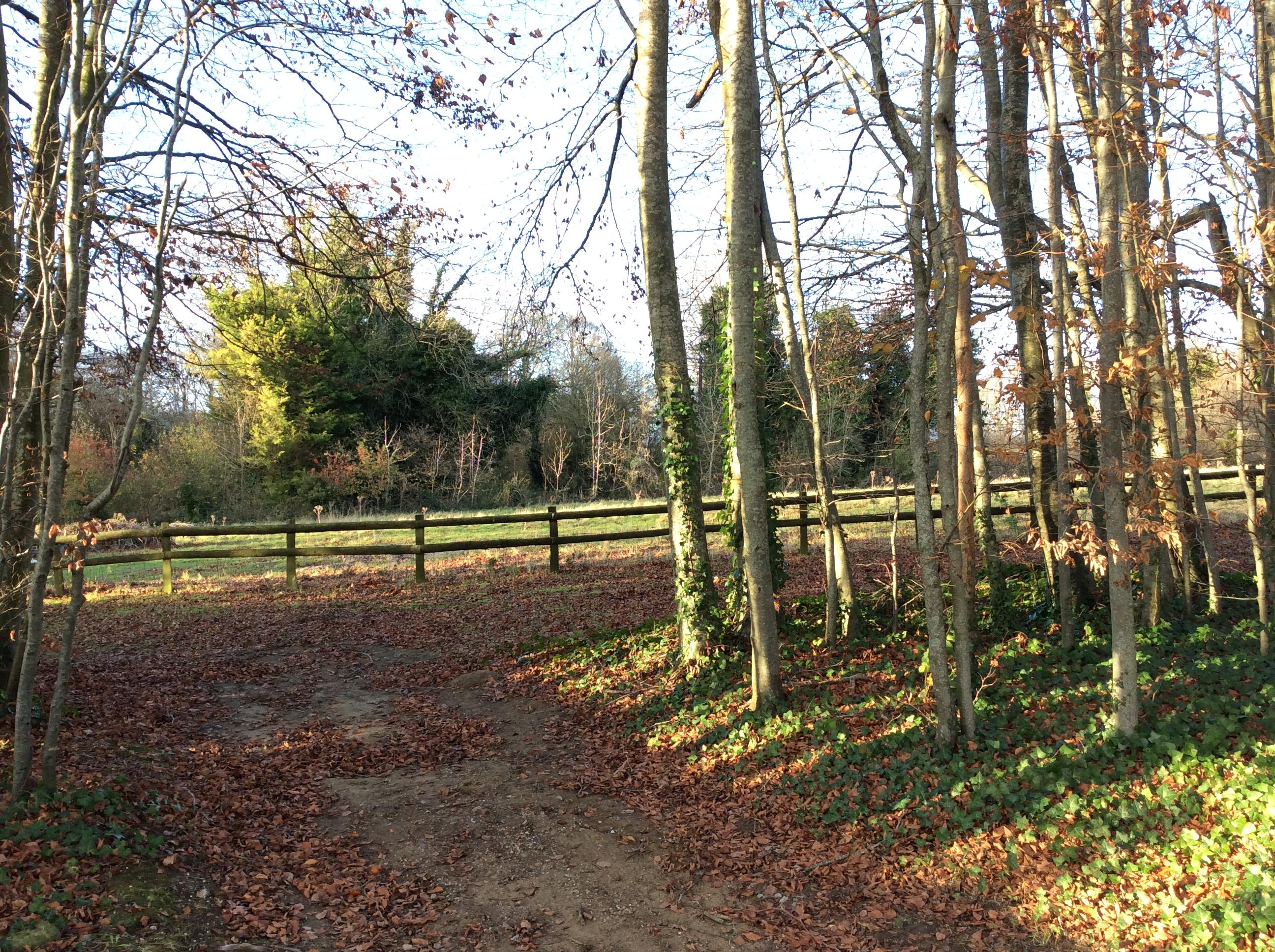 Wimborne Road Blandford